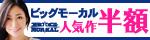 12/11(金)10時まで☆ビッグモーカル人気作品が今だけ半額!