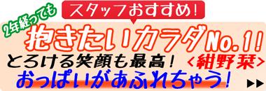 ショップイチオシ!『ミルキー・グラマー 紺野栞』