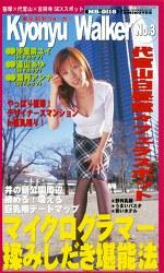 東京巨乳ウォーカー Kyonyu Walker No.3