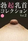 勃起乳首コレクションVol.2