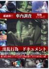 車内調査 淫乱行為ドキュメント 02