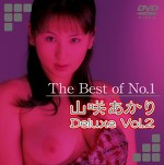 The Best of No.1 山咲あかり Deluxe Vol.2