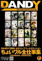DANDY3周年公式コンプリートエディション ちょいワル全仕事集 2008年6月~2009年5月