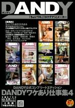 DANDY公式コンプリートエディション DANDYワケあり仕事集 4