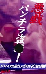 悪戯パンチラ盗○!~カワイイ犬の前でしゃがむ女子○生の股間 Part.2