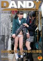 DANDYちょいワケあり仕事集 VOL.2