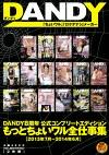 DANDY8周年公式コンプリートエディション もっとちょいワル全仕事集 2013年7月~2014年6月