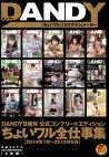DANDY9周年公式コンプリートエディション ちょいワル全仕事集 2014年7月~2015年6月