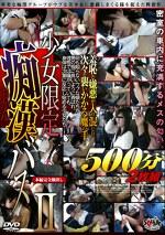 少女限定痴漢バス500分Ⅱ