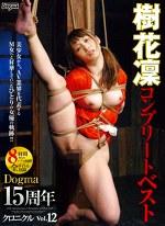 ドグマ15周年クロニクル Vol.12 樹花凜コンプリートベスト