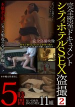 完全密室ドキュメント シティホテルSEX盗撮 2 5時間 互いの体を求めあう男女 11名