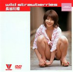 wild strawberries 長谷川瞳