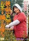 狭山の茶畑でお茶を摘むお母さん 堀池忍