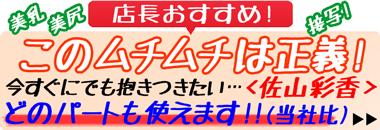 ショップイチオシ!『恋のガイダンス 佐山彩香』