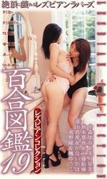 レズビアンコレクション 百合図鑑19