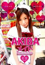AKIBA メイドありがとうございますぅ 若菜