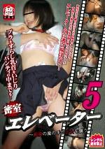 密室エレベーター ~痴漢の魔の手が少女を襲う~ 5