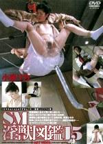 SM淫獣図鑑15 小泉リカ