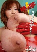巨乳 OR DIE 122cmボインの衝撃 M-cup TAMAKI
