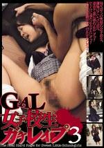 GAL女子校生ガチレイプ3