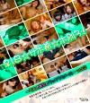 ♀1●☆サポ希☆ホ別3!~5人の美乳とワックワクメール~vol.2