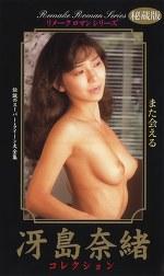 リメークロマンシリーズ 冴島奈緒コレクション