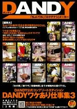 DANDY公式コンプリートエディション DANDYワケあり仕事集 3