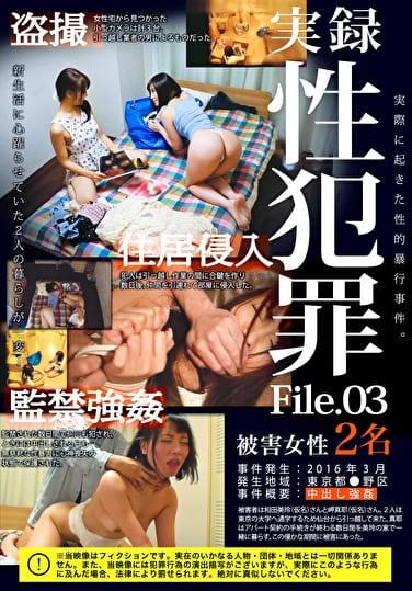 実録性犯罪File 03 逃げ場のない、自宅での強姦
