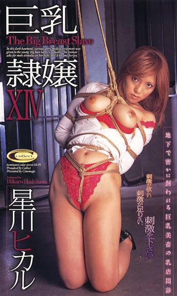 巨乳隷嬢ⅩⅣ 星川ヒカル
