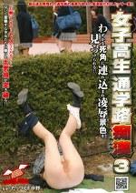 女子高生通学路痴漢 3