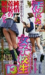 汚れた女子校生13 純情羞恥の制服たち