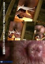 清楚な19歳女子大生の美しすぎる肛門と脱糞を下から仰ぎ見る