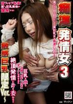 痴漢発情女3 ~敏感巨乳限定Ver.~