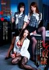 レズ奴隷 vol.3 陥落心酔・狂いはじめた女社長の品格
