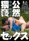 山・川・便所・車 公然猥褻セックス