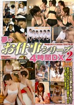 夢のお仕事シリーズ4時間DX 2