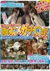 伊豆長岡温泉で見つけたウブお嬢さん 見たこともないような極太メガチ○ポ初体験してみませんか!?