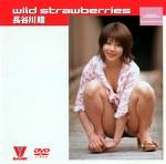 wild strawberries 長谷川瞳