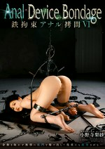 Anal Device Bondage Ⅵ 鉄拘束アナル拷問 小野寺梨紗